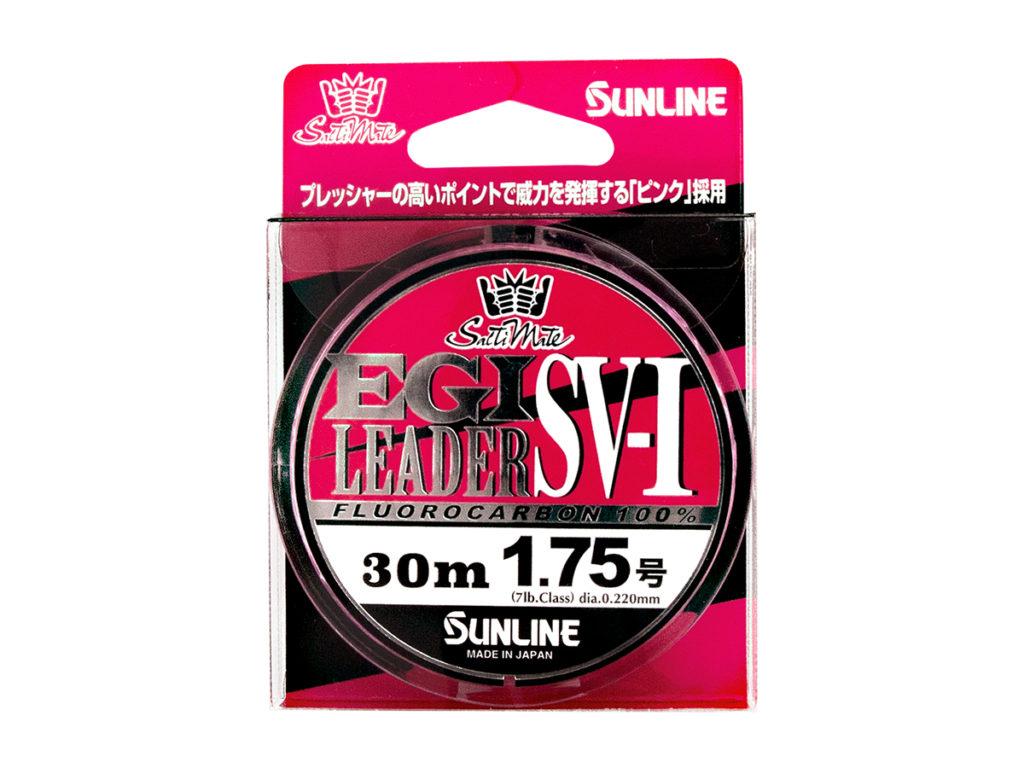 EGI LEADER SV-1