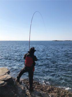 初釣り 磯フカセ