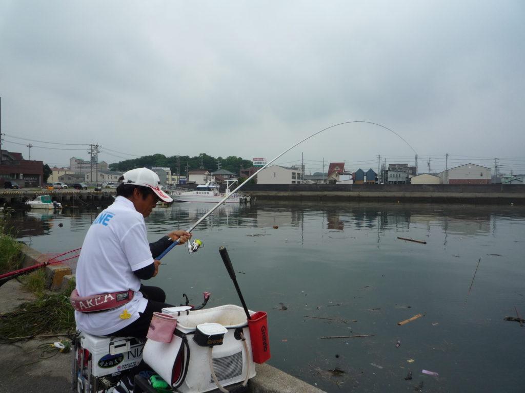 波止のダンゴ釣り