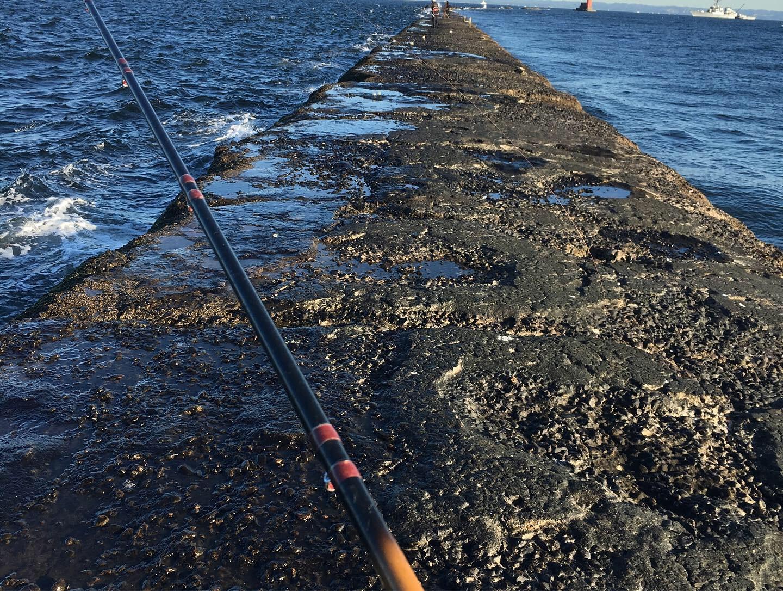 激シブの手厳しい東京湾…。