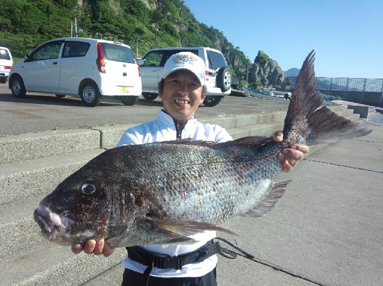 新潟県佐渡ヶ島の真鯛