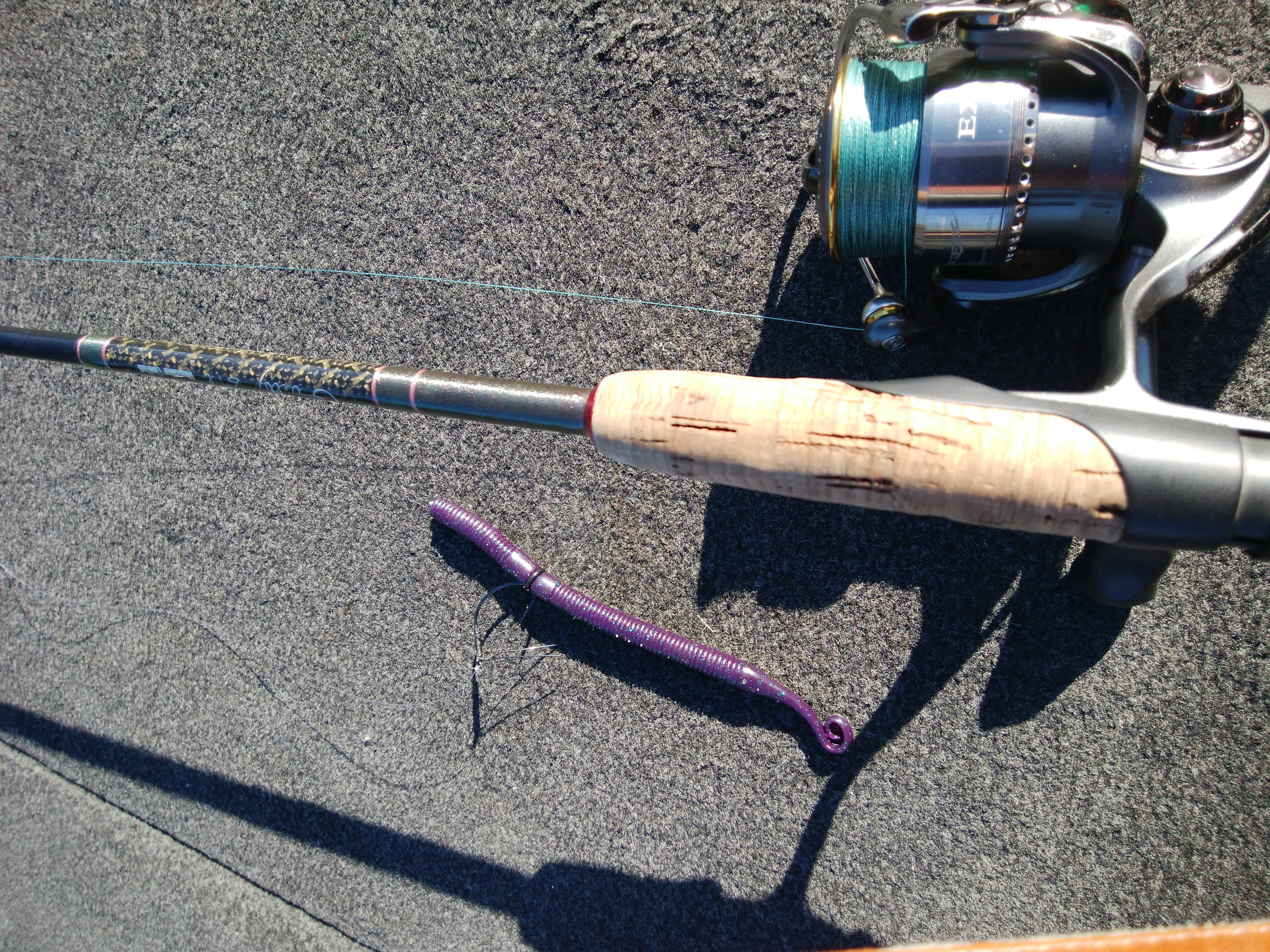 FLW COSTA series ClearLake何とか入賞