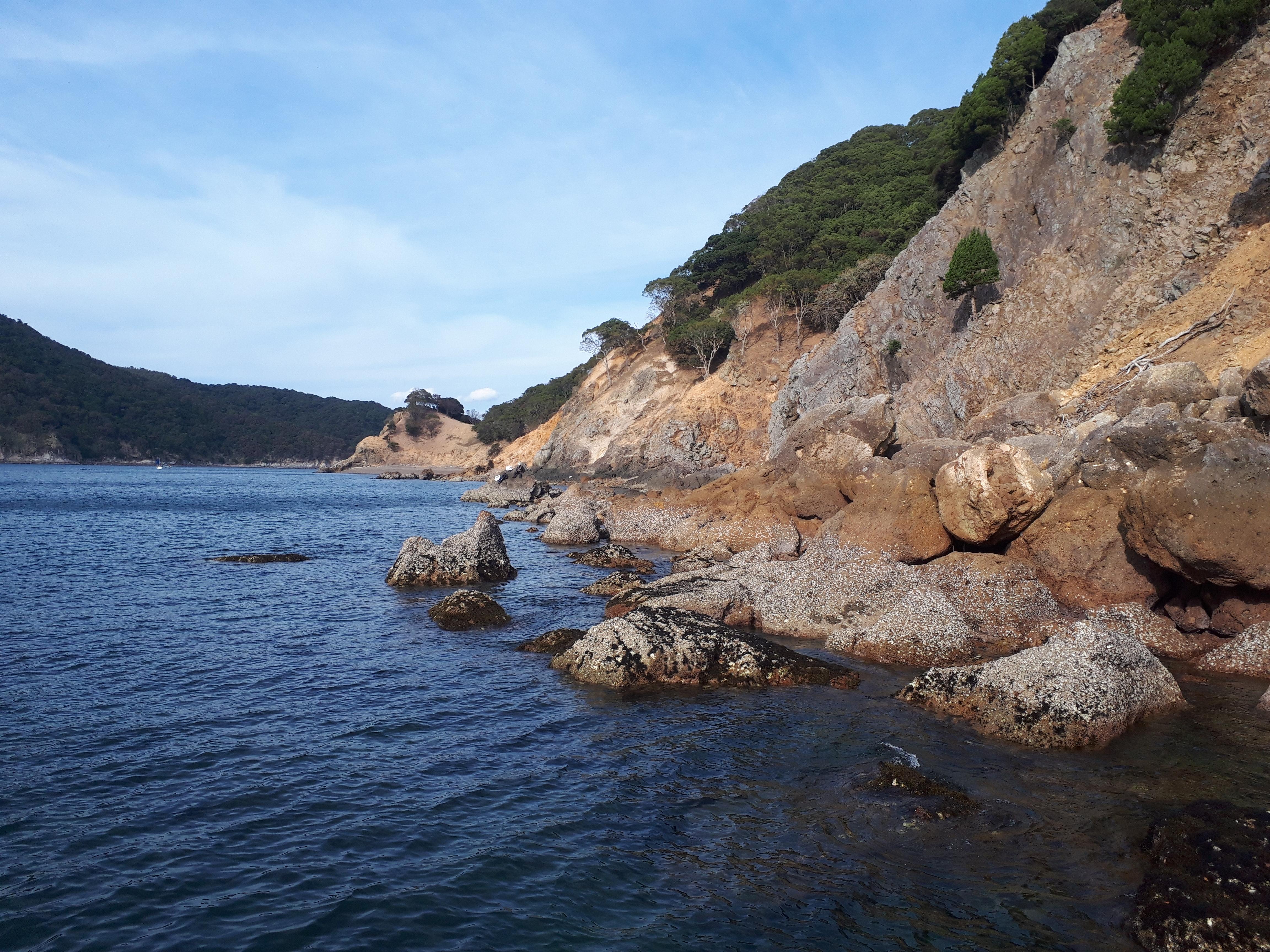 周防大島でグレ釣り