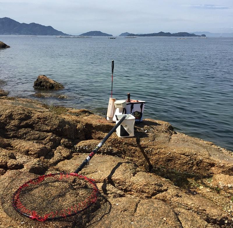 真夏の広島湾釣行