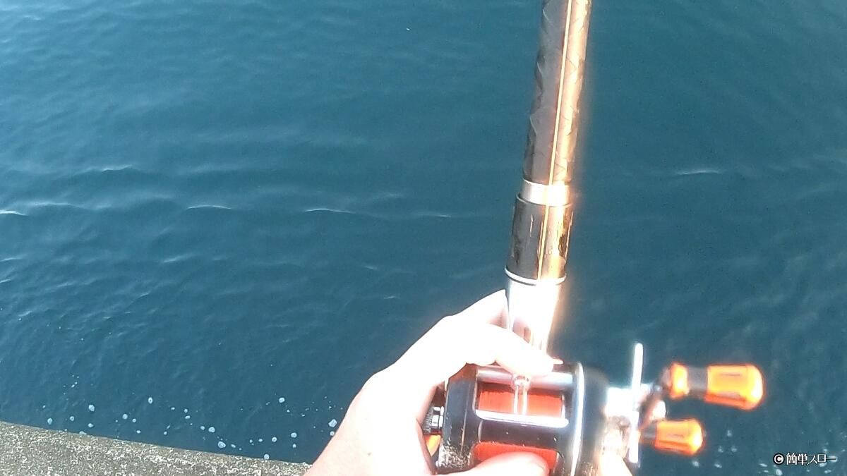 遠投カゴ真鯛