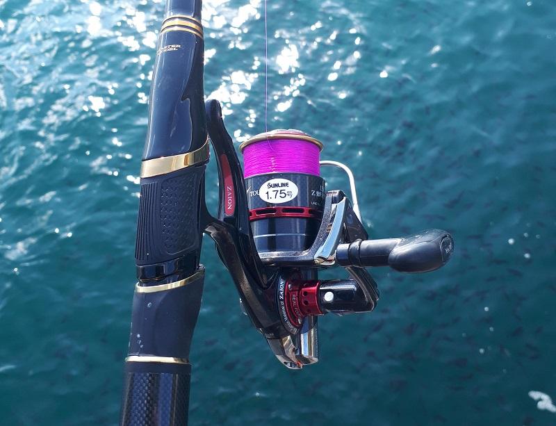 津和地島のグレ釣り