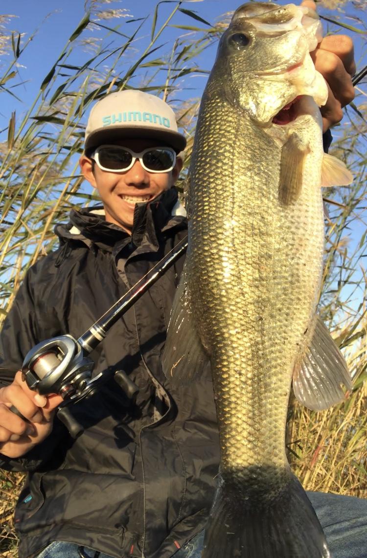 秋定番の釣り!