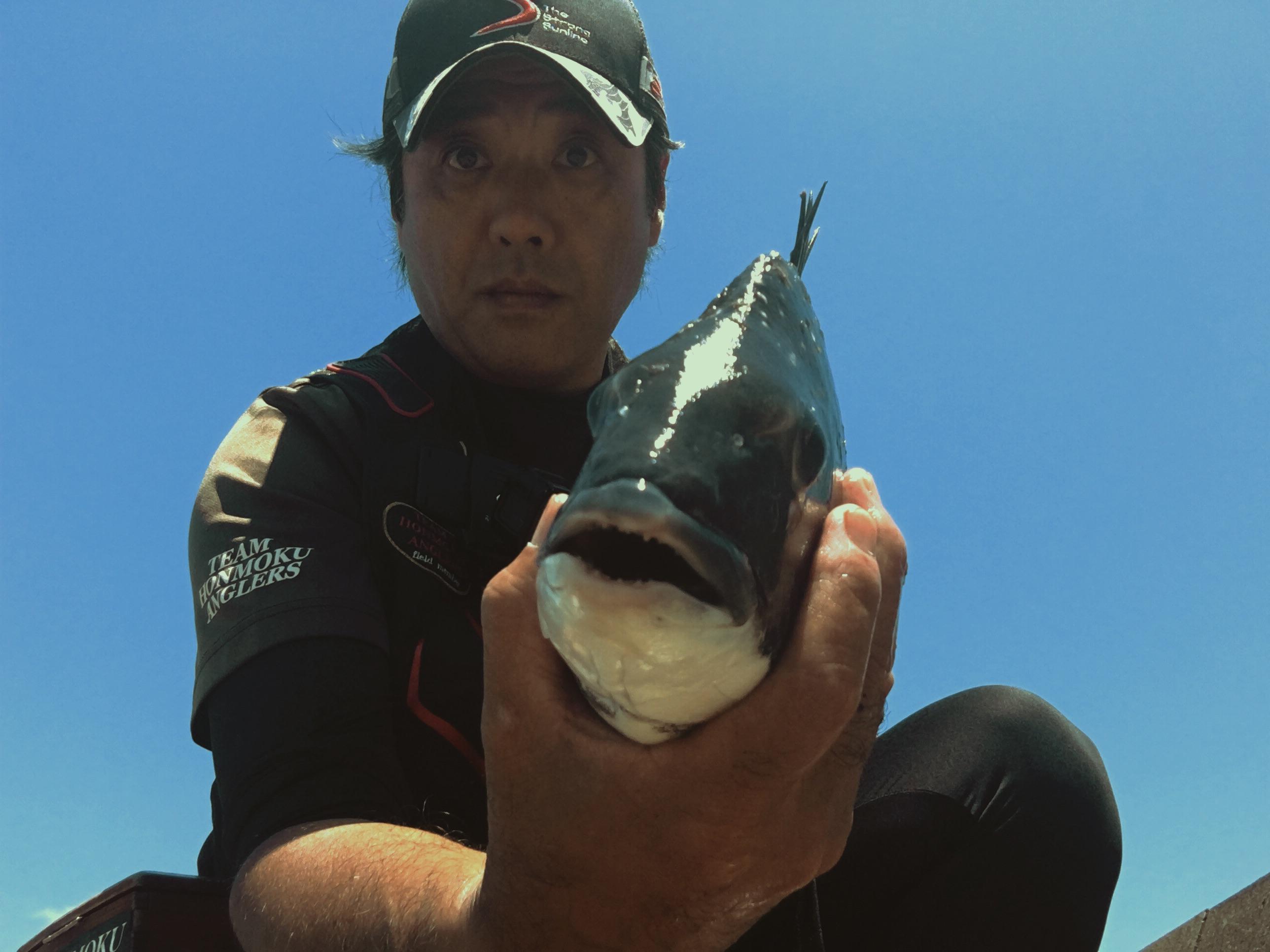 黒鯛ハリス絶好釣