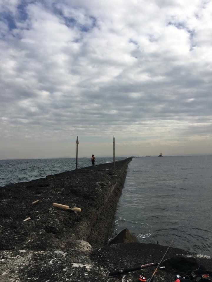 澄み潮の野島 青灯