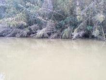 濁った水には、FCスナイパーBMS
