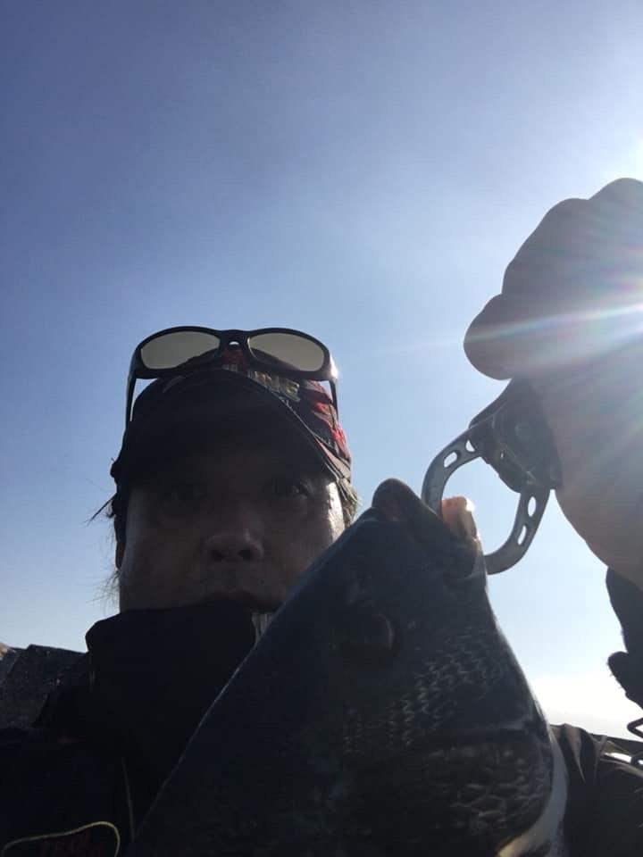 澄み潮の東京湾 地底と浅タナの魚