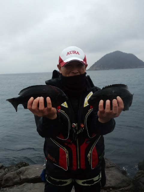 グレの数釣りを堪能